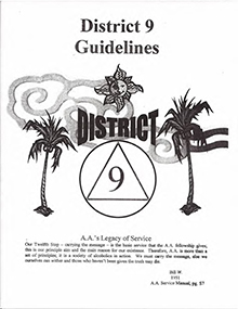 District 9 Guidelines  (PDF)