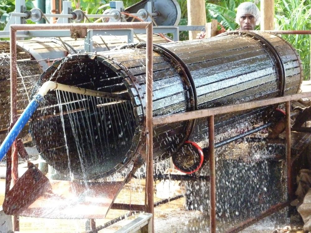 Water cleaner for Taro Kaiming Fiji.JPG
