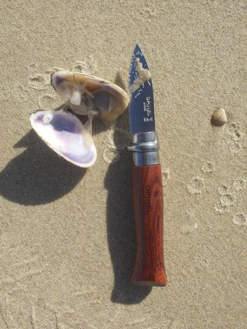 Opinel shell fish knife