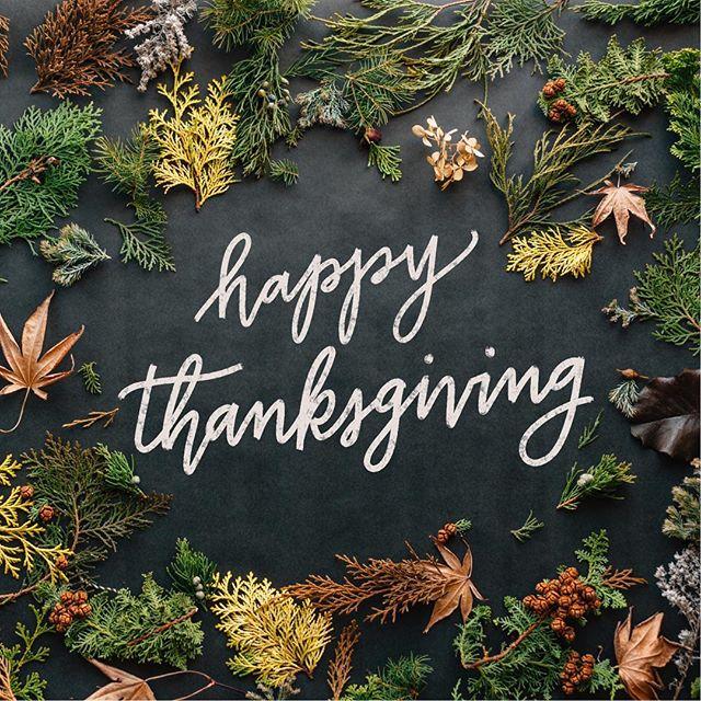 Happy Thanksgiving, pals!