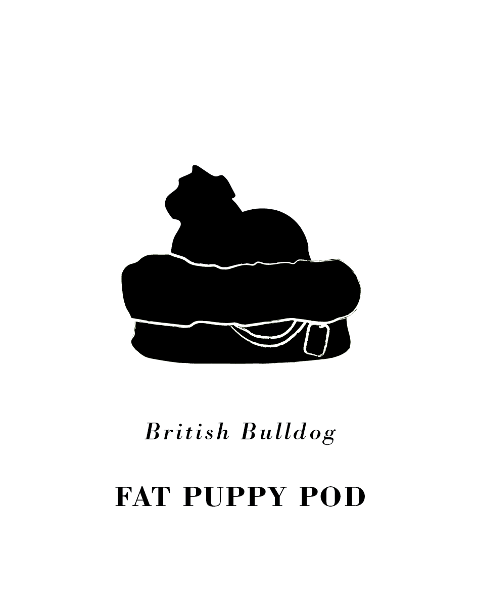 Fat Puppy Dog.png