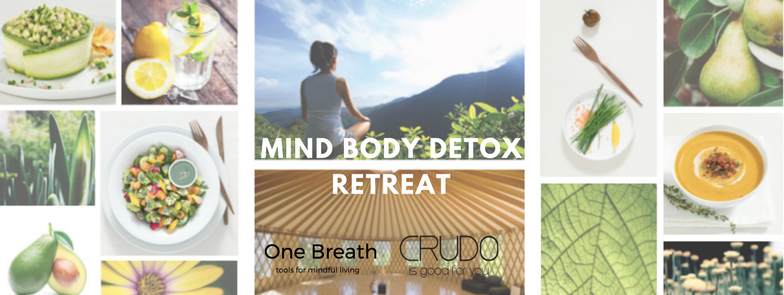 Mind Body Detox Retreat - Σε μια μαγευτική τοποθεσία στην Αρκαδία, κοντά στο ναό του Επικούριου Απόλλωνα και τους καταρράκτες του ποταμού Νέδα, μέσα στο πράσινο δάσος, διοργανώσαμε ένα 2ήμερο retreat mindfulness με ωμοφαγική vegan διατροφή από το Crudo στο Abeliona Retreat για μια υπέροχη ομάδα.