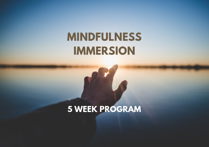 Mindfulness Immersion - Intensive experiential mindfulness workshop that includes training and practice in various meditation techniques, mindful yoga and group sharing as well as psychology tools, based on the MBSR program.Includes:- 5 weekly classes of 1.5 hour duration - Guided mindfulness practice- Guided mindfulness meditations for home practice- Print and audio support material