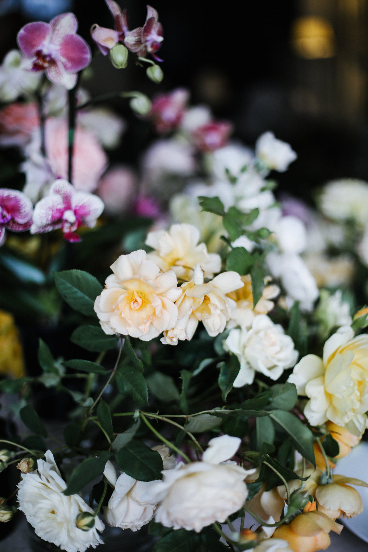 Flowers in a Vase-34.jpg