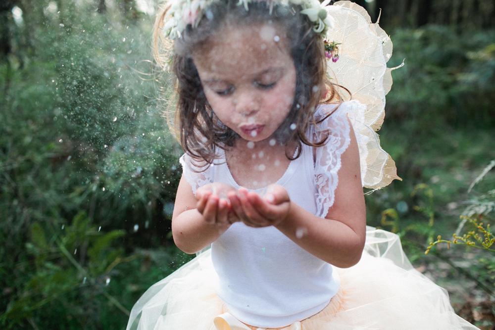 Fairies101web.jpg