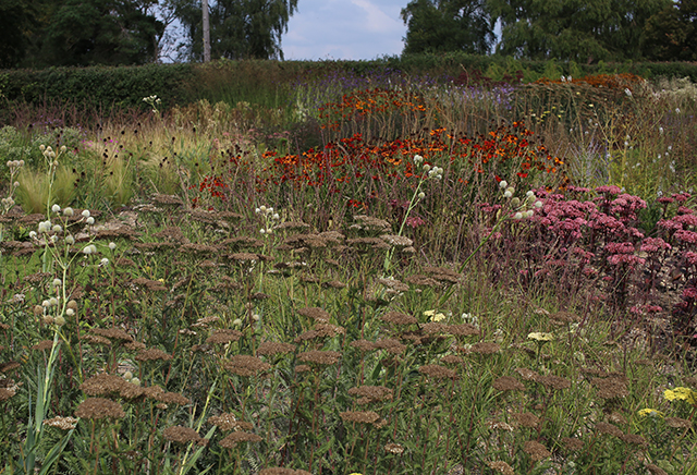 piet-oudolf-interview-hauser-wirth-somerset-garden-perennials-bruton-