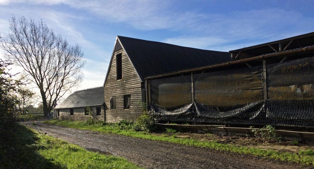 Wiltshire-barn-conversion-pewsey-prewett-bizley-architects-2.jpg