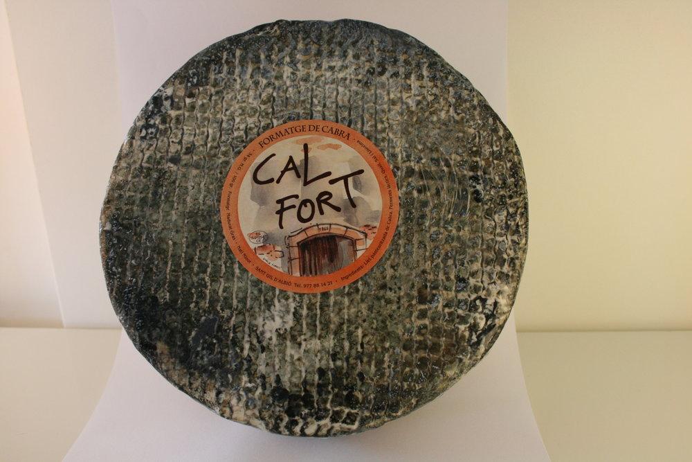 Cal Fort 2.JPG
