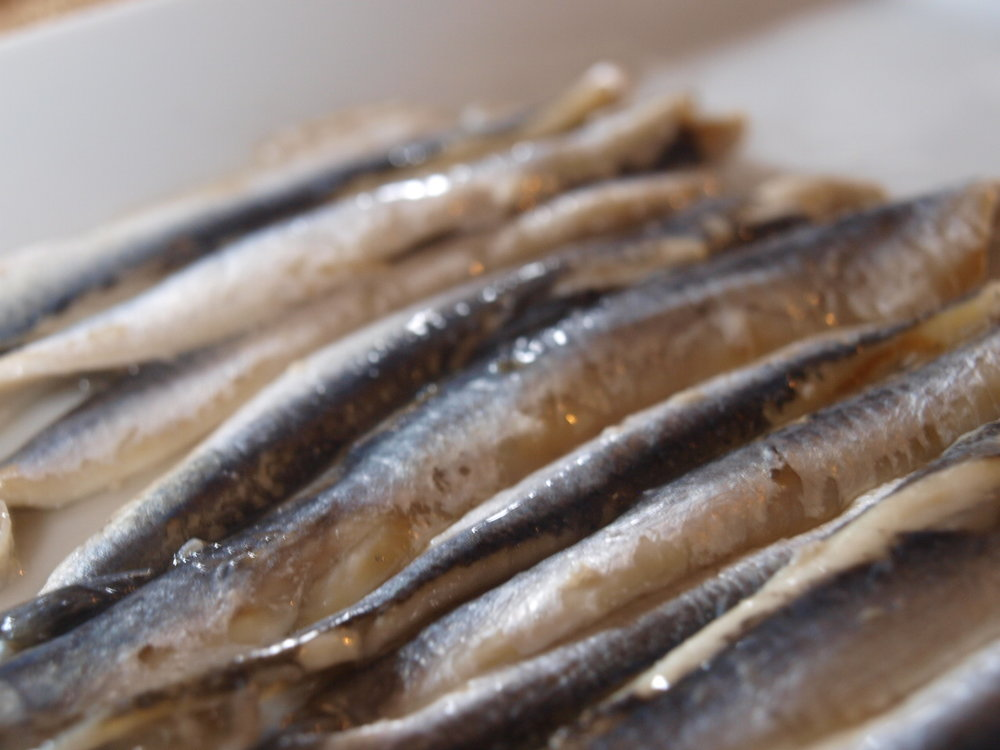 Anchoas.jpg