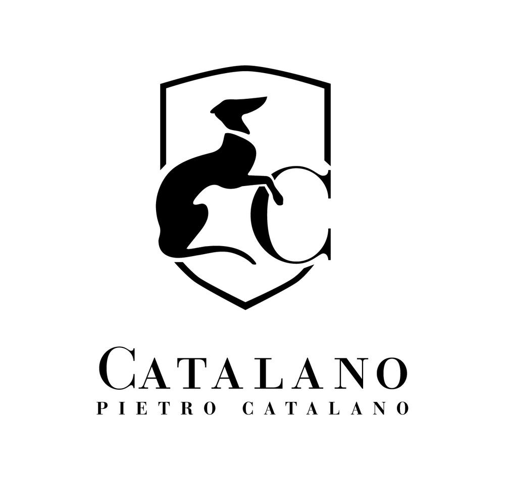 www.groupcatalano.com
