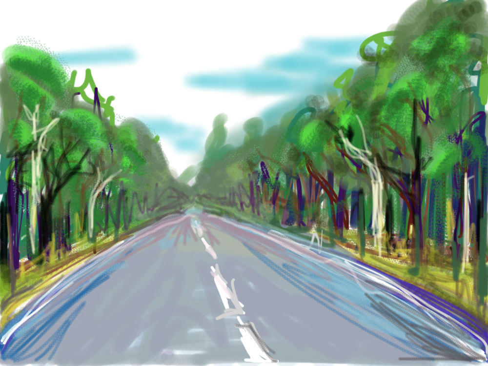 Prince's Highway Trees