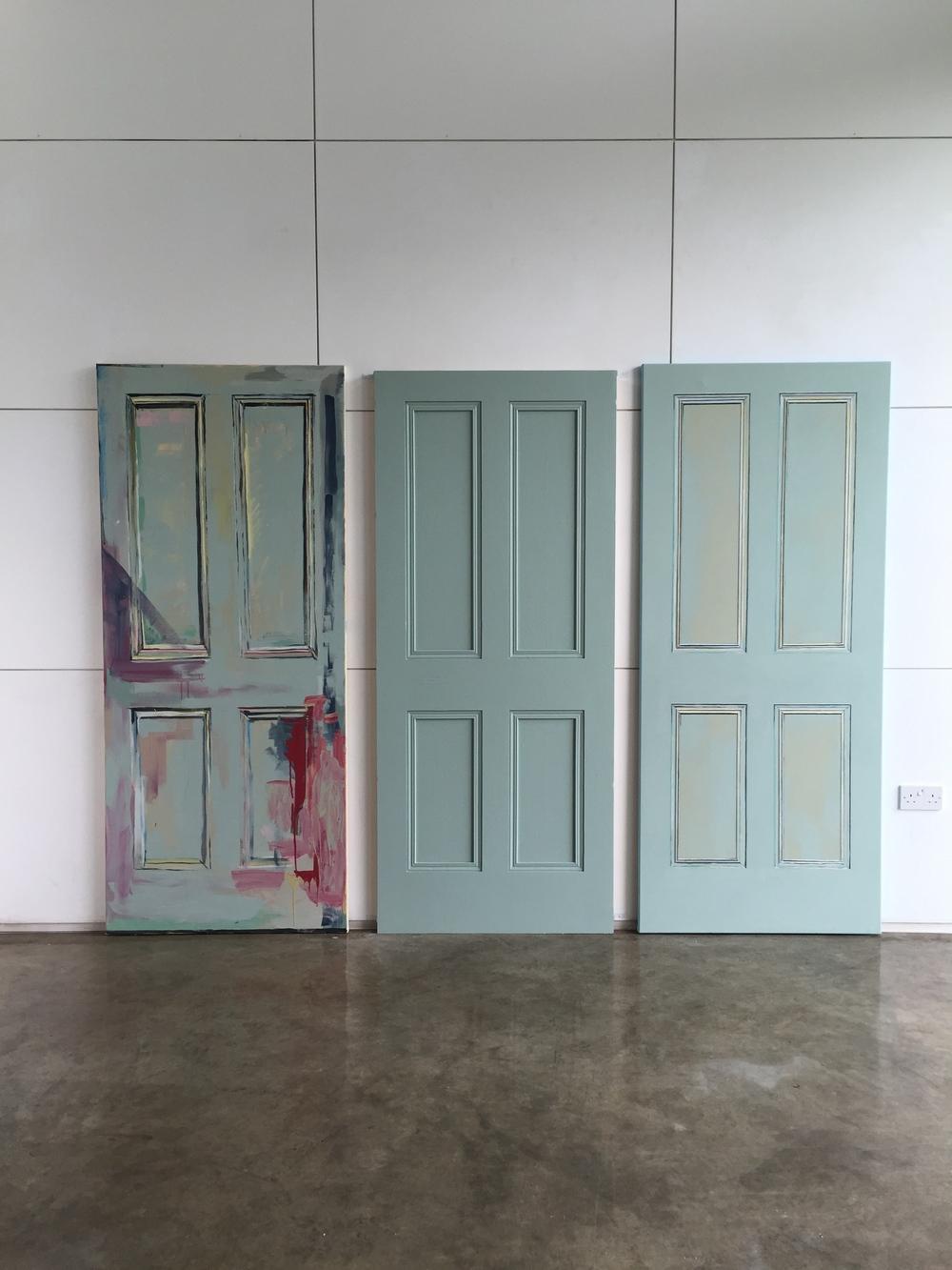 DOORS: Farrow & Ball emulsion on wood and canvas (80 x 200cm)2015