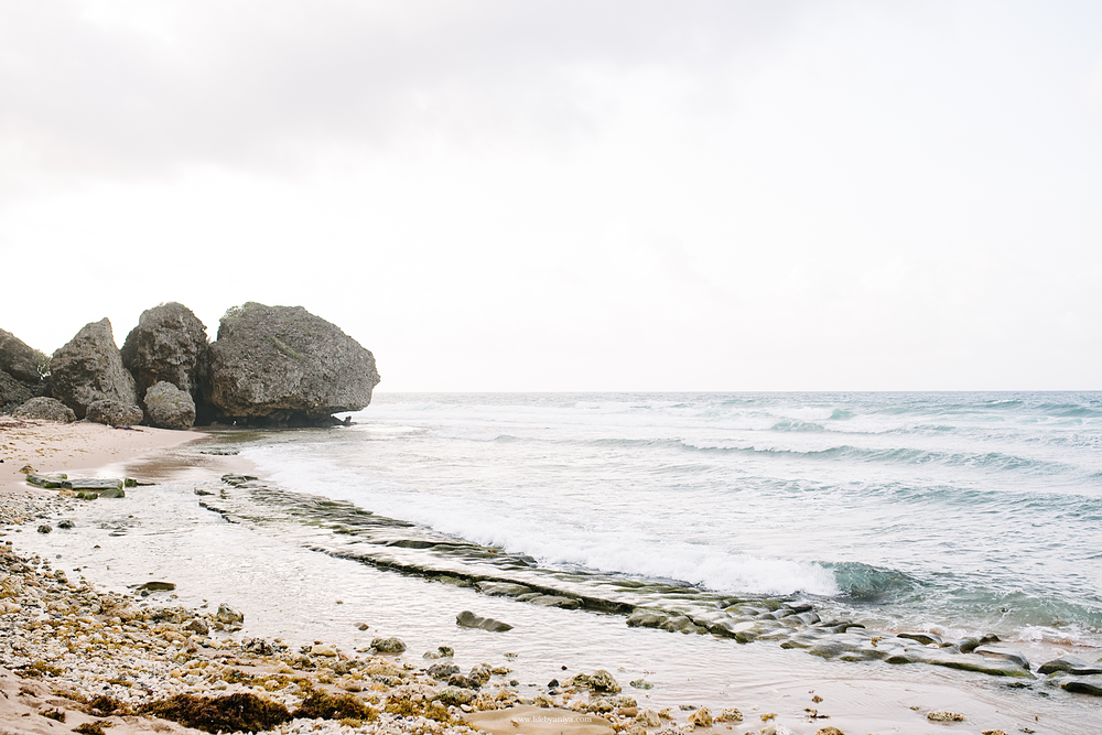Life Photography by Aniya_Barbados_Engagment_Photos_St. Nicholas Abbey_MA15.png