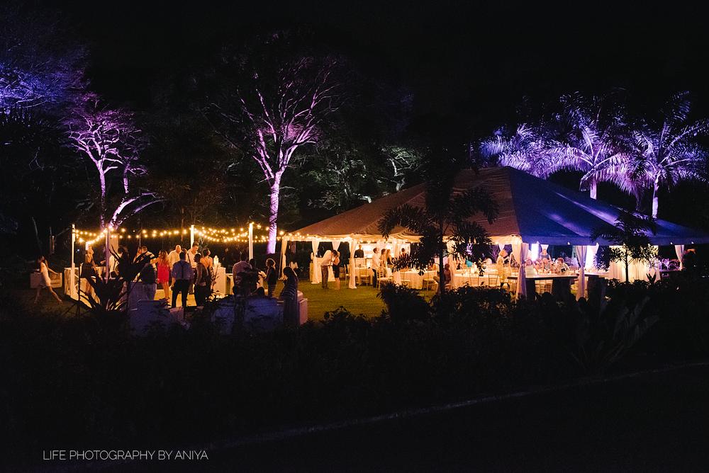 barbados-wedding-photography-halton-greathouse-barbados-ad-03 (2).png