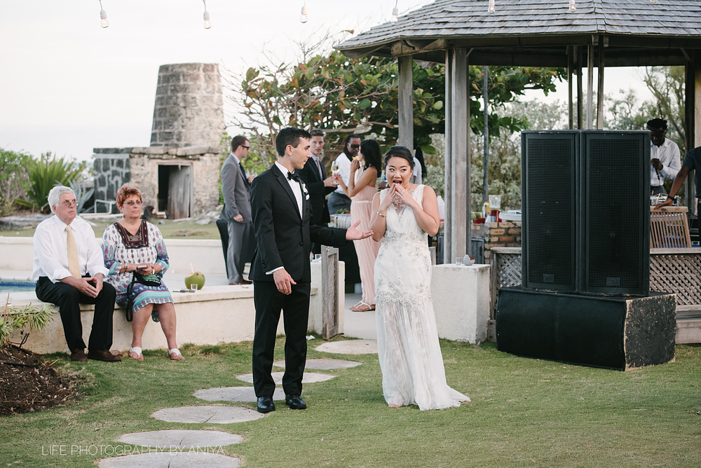 barbados-wedding-photography-Belair-Great-House-tj-179.png