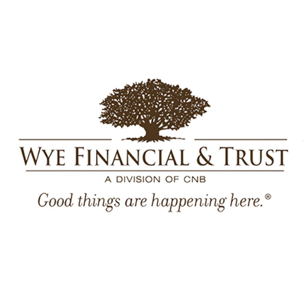 Web Logo - Wye Trust.jpg