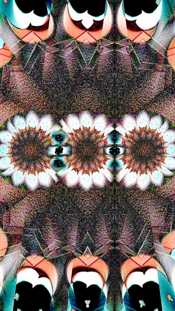 17.1.43web_brian-moss.jpg