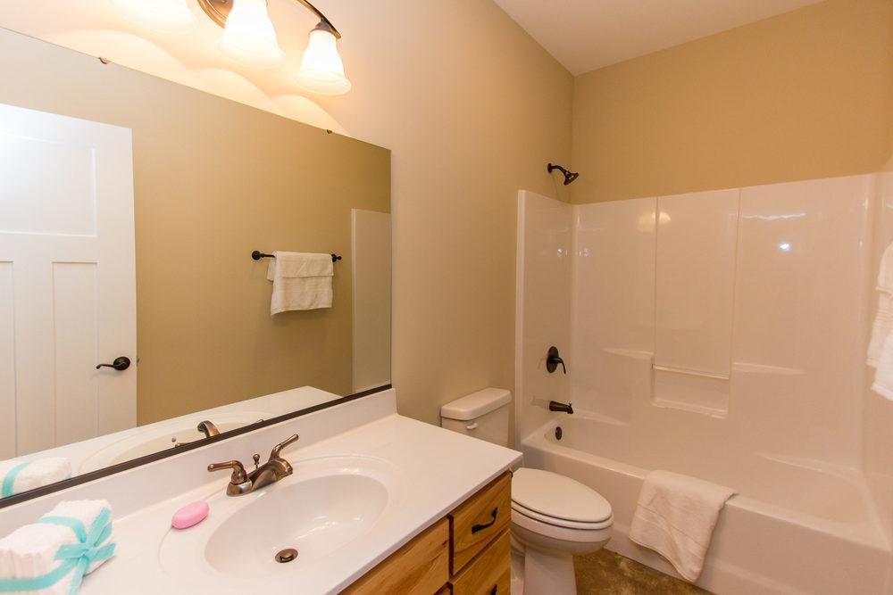 97 Israel Rd Leicester NC-MLS_Size-052-56-Guest Bathroom-3000x2000-72dpi.jpg