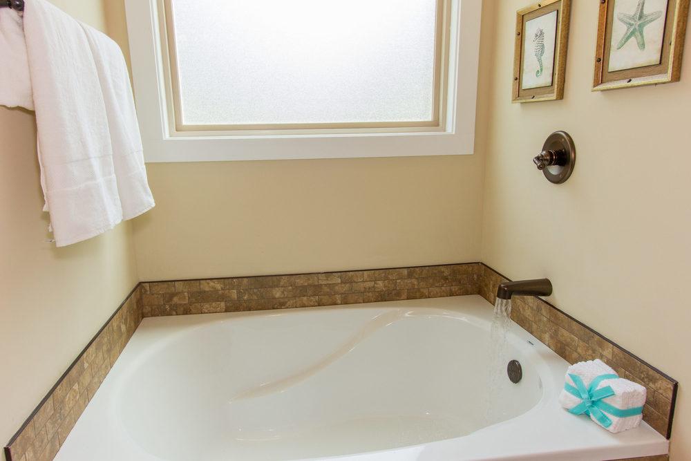97 Israel Rd Leicester NC-MLS_Size-045-59-Master Bath Garden Tub-3000x2000-72dpi.jpg