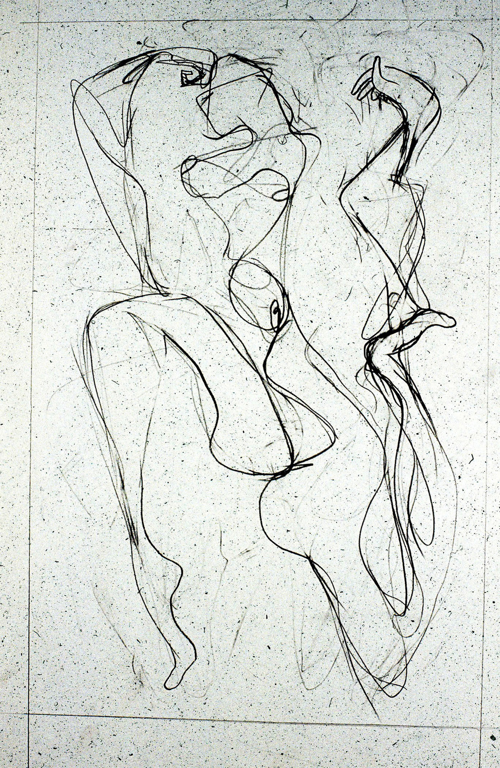 2012  Graphite on paper  24x18 in.