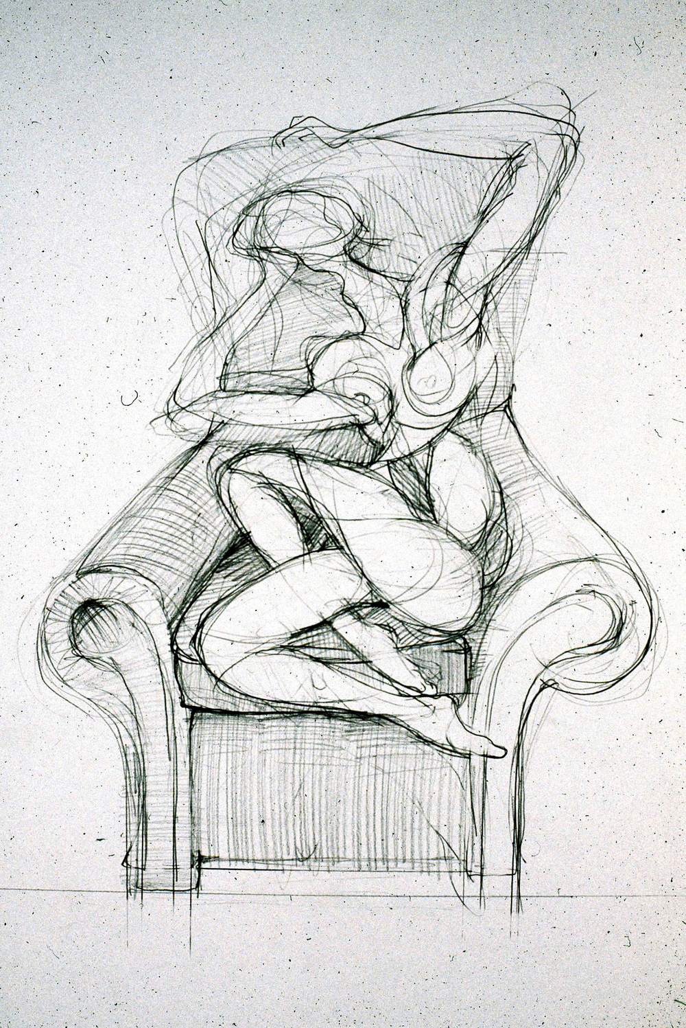 2006  Graphite on paper  24x18 in.