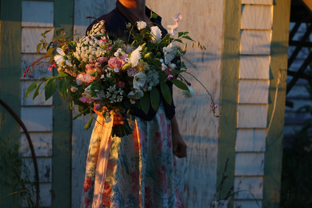 Flower Farm and Wedding Florist. Nova Scotia. Organic, locally grown cut flowers. Echo champagne lisianthus, cupcakes cosmos, crespedia, orlaya, quaking grass, sweet pea on the vine, solomon's seal, gaura and ammi