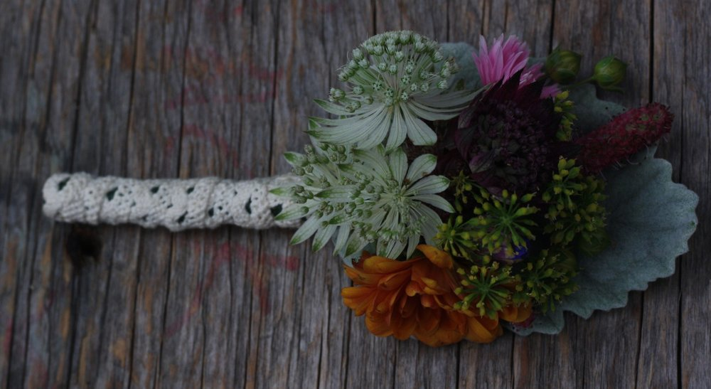 Groom's boutonniere from Nova Scotia's Hedgerow Flower Company. Featuring dusty miller, astrantia, bachelor's buttons, chrysanthemum, flax, sanguisorba and parsley.