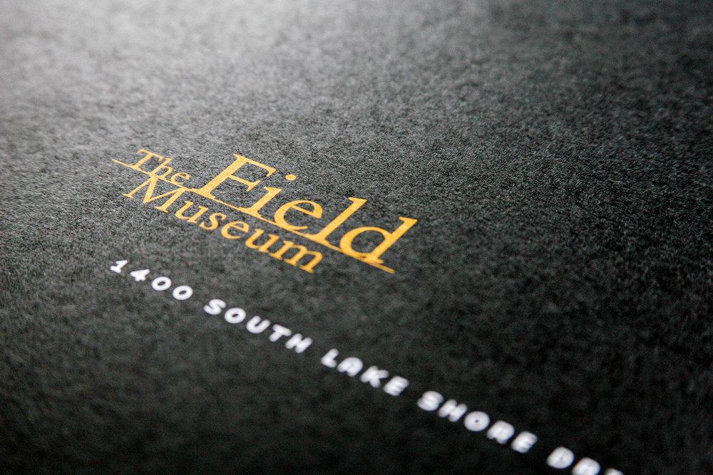 FIELD_2007_03_1500.jpg
