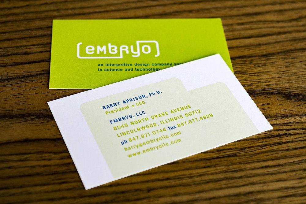 Embryo_06_1500.jpg