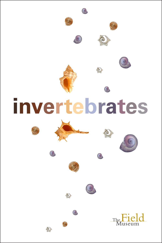 ID day_invertebrates.jpg