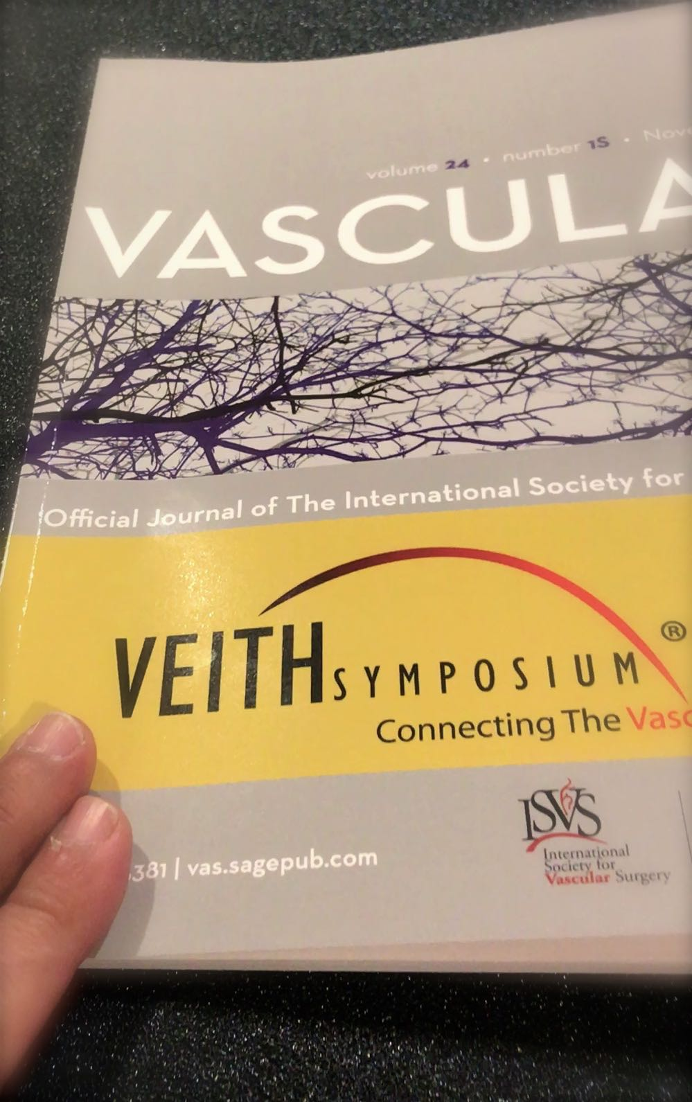 veith symposium a great success western institute vlcsnap 2016 11 16 09h31m34s056 jpg