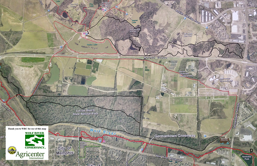 This map shows the connectivity with the Wolf River trails and Shelby Farms Park trails.