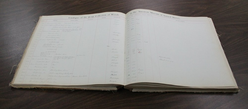 Ledger book of the Jesup Collection   Click here to download a copy of the ledger .