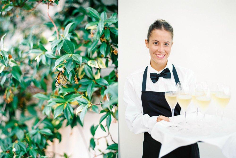 Cardamom Ibiza Catering