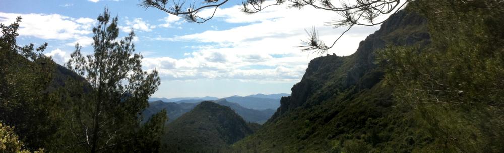 Peak View