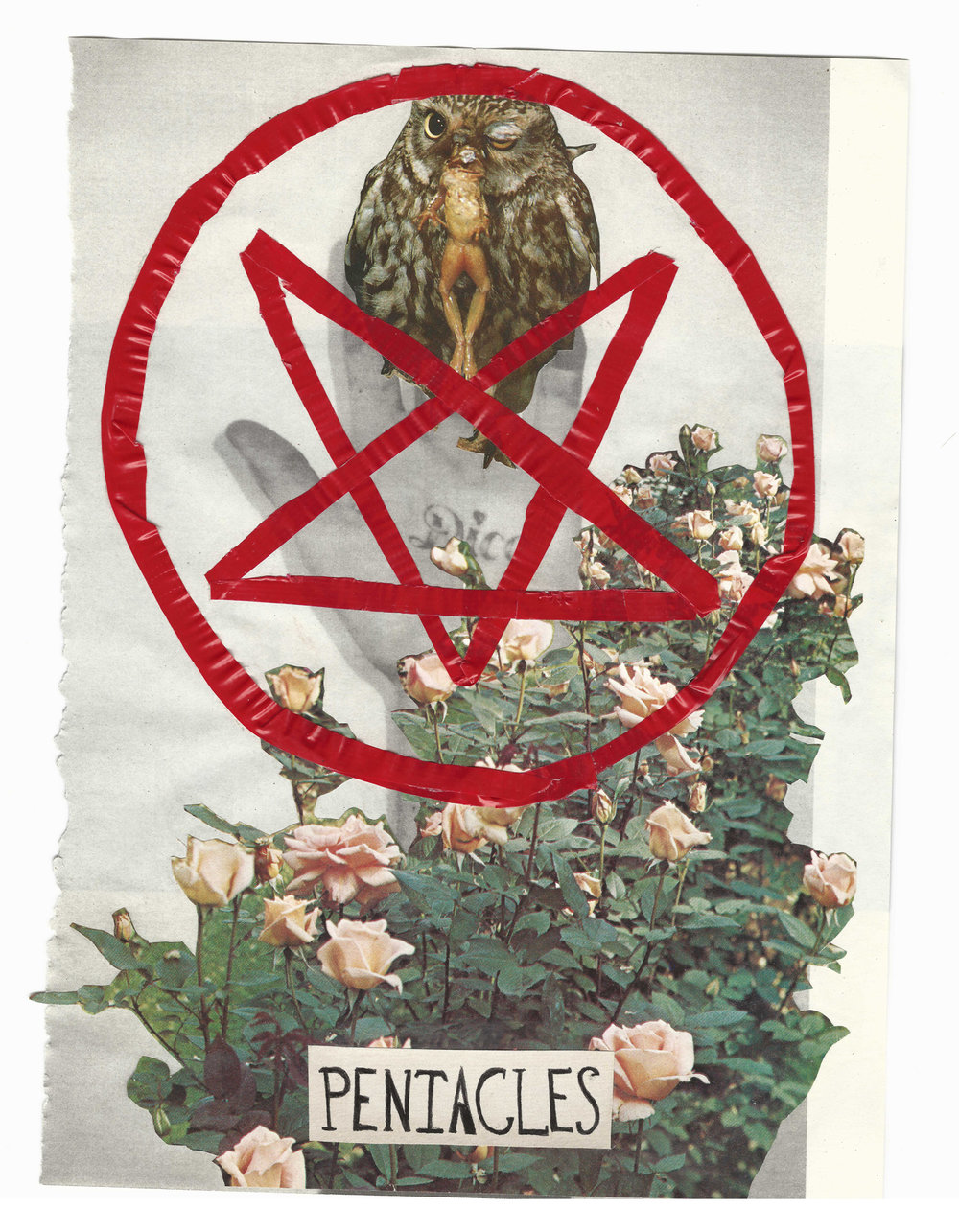 Ace of Pentacles (The Gift of Earth: Wealth, Security, Joyful Life), 2016.