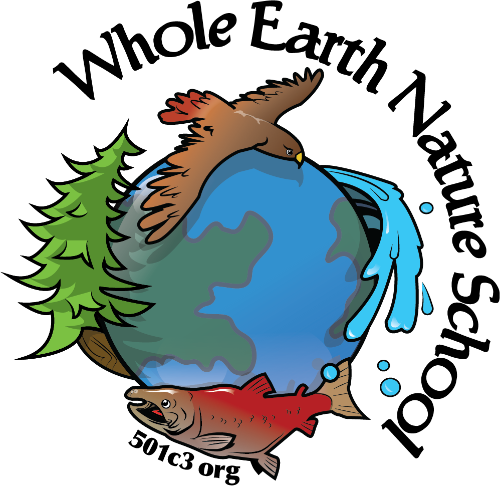 Whole Earth Nature School WENS-large-square.png