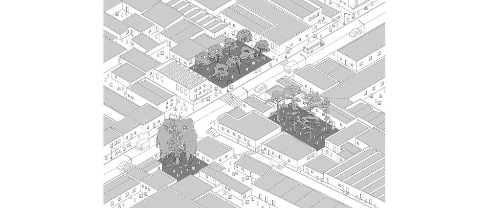 30-PROGRAMMED TREES.jpg