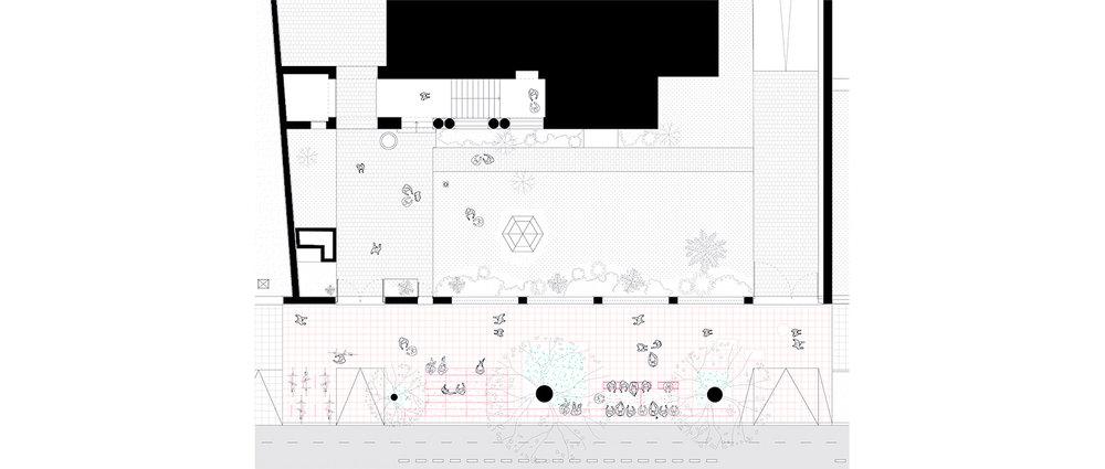Plan-Comun-MSSA-Planta.jpg
