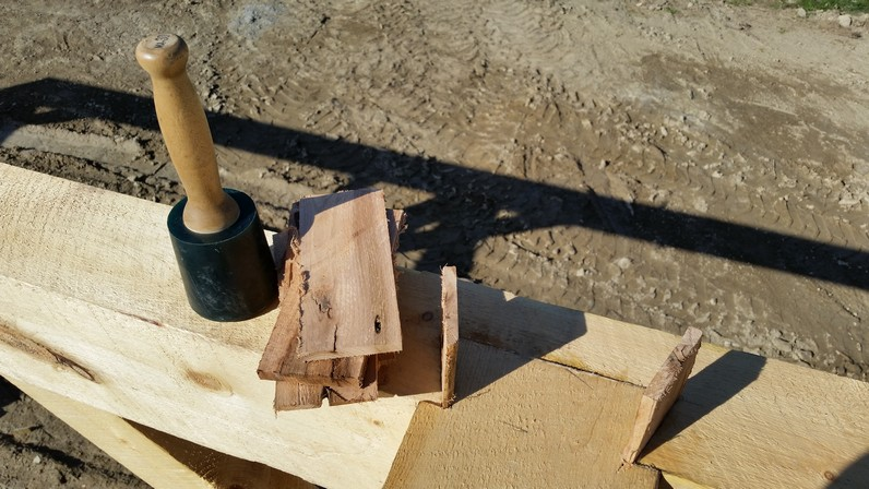 Dovetail with red oak wedges set