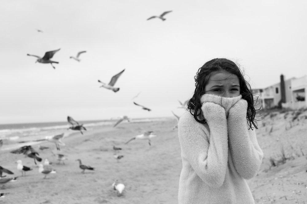 LBI Seagulls-3.jpg