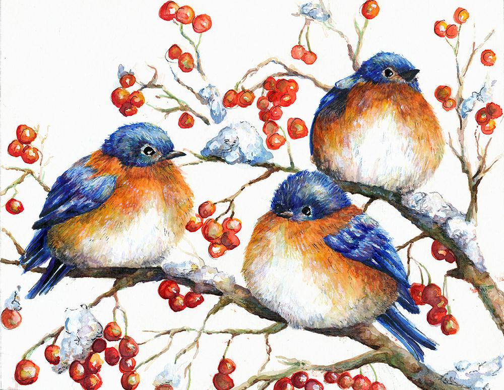 Bluebird Christmas Card