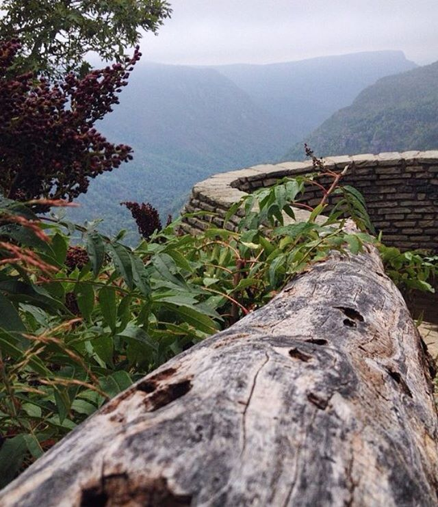 Linville Gorge on a foggy day 😍What's your favorite Wilderness area? #explorencoutdoors #explorenc #exploreyourstate #protectourlands #northcarolina #asweseek