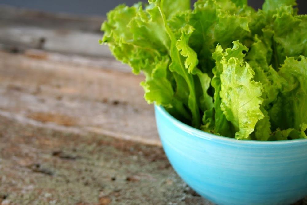 lettuce_leaf-300x2001.jpg