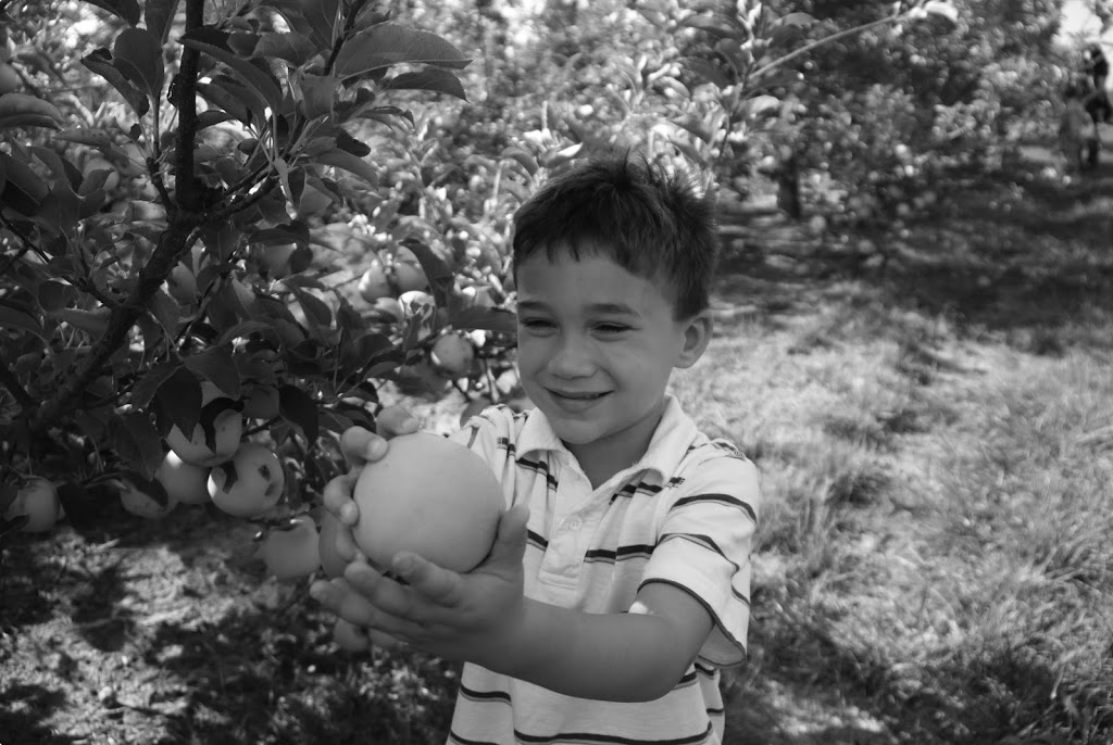 Kids Apple Picking