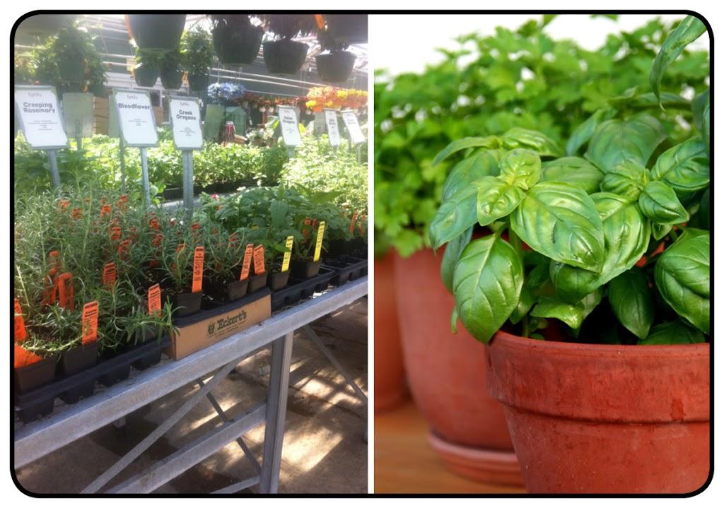 Gardening Center Belleville