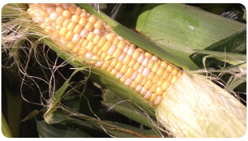 corn husk2