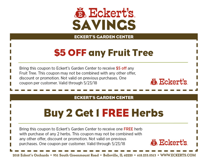 Sign up for our newsletter below to receive more coupons and specials via email!