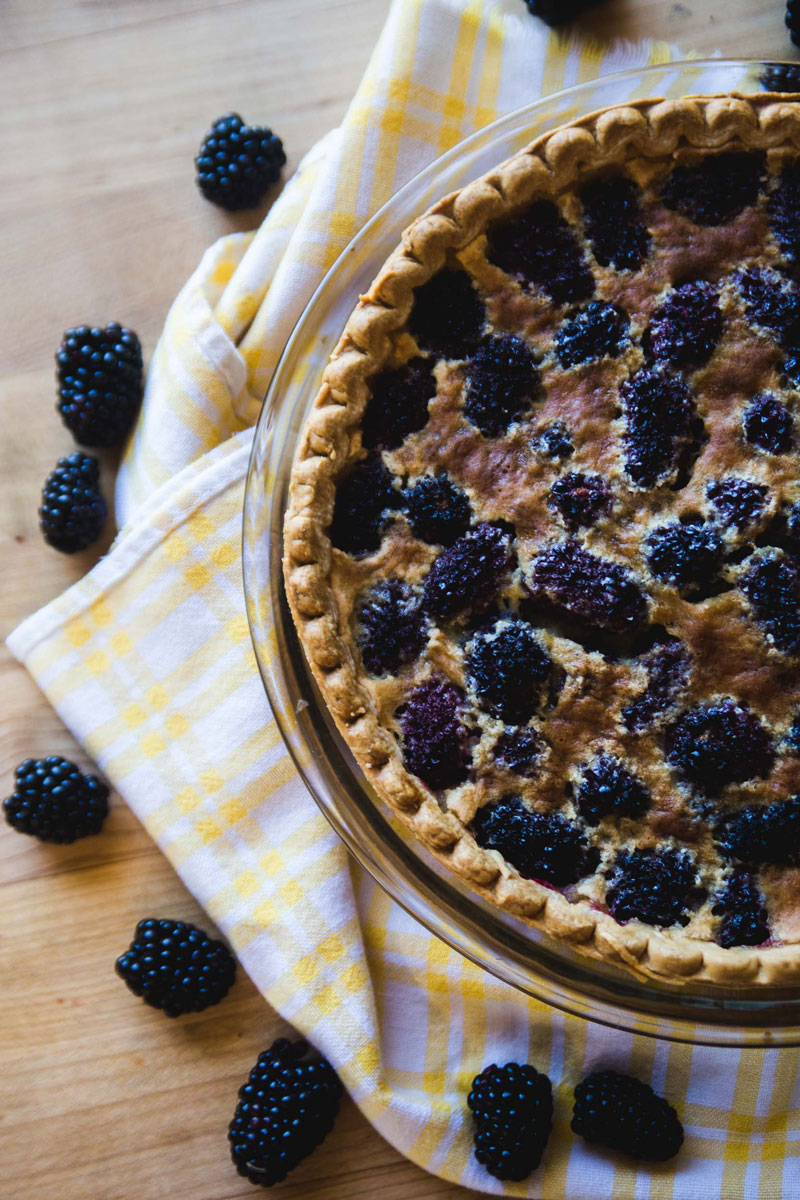 Blackberry-Custard-Pie-3.jpg
