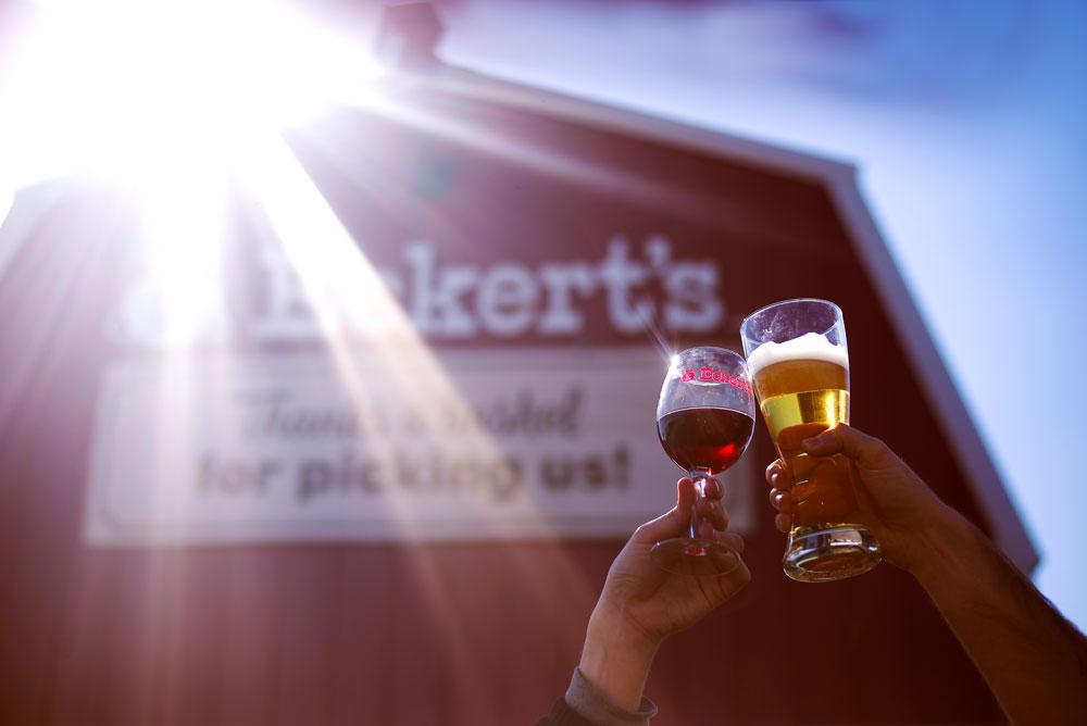 cheers---sunlight.jpg